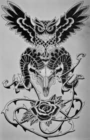owl skull by leepierson on deviantart