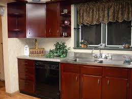 Rustic Birch Kitchen Cabinets Kitchen Beauteous U Shape Kitchen Design Using Light Green Pastel