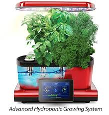 how to prepare your garden for the winter months u2014 plant smart living
