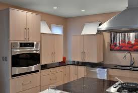 ada kitchens