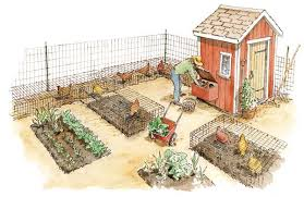 Keeping Free Range Chickens In Your Backyard Chickens In The Garden Eggs Meat Chicken Manure Fertilizer And