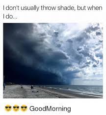 Shade Memes - i don t usually throw shade but when i do goodmorning shade