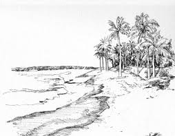 drawings of nature types 12 pencil drawing of natural scene