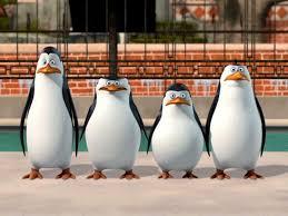 the penguins of madagascar penguins of madagascar x reader by scrougeofares on deviantart