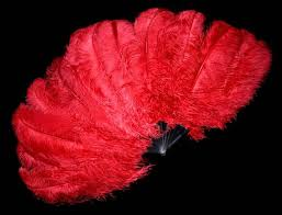 feather fans pin by a l s 3 on ℳouℒiȵ ℛouɠe ostrich feathers
