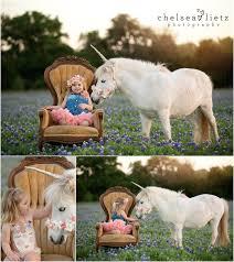 Unicorn and pony photos for children chelsea lietz photography