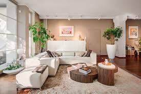 room with plants 32 lively living rooms with houseplants great pictures