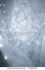 Branches With Lights Xma Stock Images Royalty Free Images U0026 Vectors Shutterstock