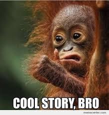 Baby Monkey Meme - meme center largest creative humor community bro monkey memes