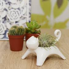 ceramic cat plant holder with a plant by dingading terrariums