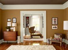 painting livingroom the wall color burnt almond behr paint from home depot