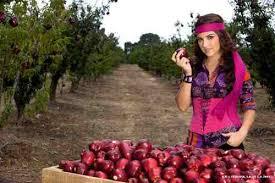 Maite Perroni como Lucrecia Córdoba - Fotos FormulaTV - ac1pr8hzucuhpalw3n4c6d51c58d051_maite-perroni-como-lucrecia-cordoba
