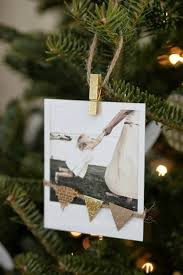 best 25 christmas tree photography ideas on pinterest christmas