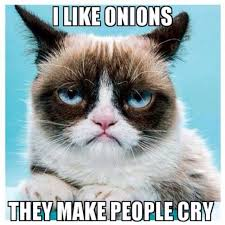 Good Grumpy Cat Meme - grumpy cat i like onions they make people cry grumpy cat