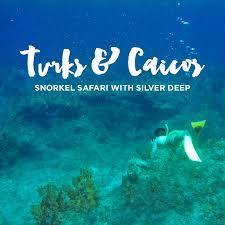 Nevada Snorkeling images Turks and caicos snorkeling safari local adventurer jpg