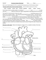 12 best circulatory system images on pinterest circulatory