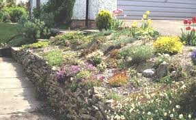 How To Build A Rock Garden The Rock Garden