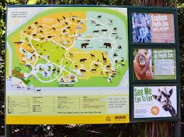 Washington Dc Zoo Map by Australia Zoo How To Do It All In A Day Posts By Listofmaps You