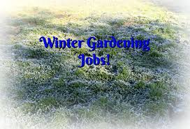 my to do list of winter gardening jobs the links site