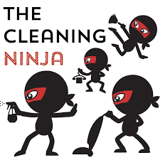 the cleaning ninja book is available today the creek line house