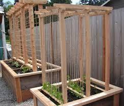 Diy Garden Trellis Ideas Homemade Trellis Ideas U2013 Outdoor Decorations
