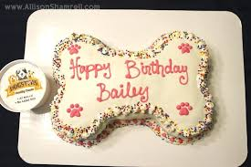birthday cakes for dogs dog birthday cake cakes for dogs to eat recipes cupcake