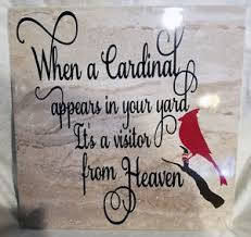 sign when a cardinal appear in yard visitor from heaven in memory