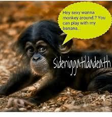 Sexy Monkey Meme - hey sexy wanna monkey around you can play with my banana meme on