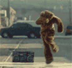 Dancing Bear Meme - breakdancing bear know your meme