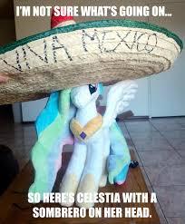Mexican Sombrero Meme - 350427 artist needed hat image macro irl meme photo