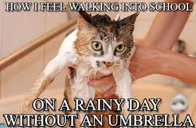 Rainy Day Meme - no umbrella how i feel walking into school on memegen