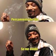 Memes De Marihuanos - imagenes con frases de fumar marihuana versos cortos para