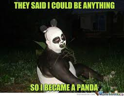 Panda Meme - they said i could be anything meme boomsbeat
