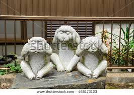 three monkeys stock images royalty free images vectors