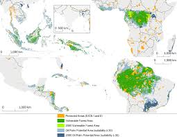 the impacts of oil palm on recent deforestation and biodiversity loss