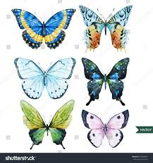 butterfly watercolor illustration vector set isolated stock vector