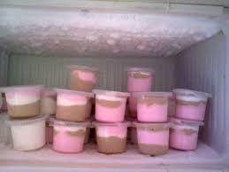 membuat es krim yang sederhana cara membuat es krim rumahan 2 rasa yang sederhana dan gang