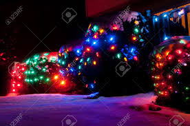 outdoor christmas lights for bushes plush 2015 led light on roof line incandescent lights wrapped on