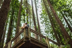 portland wedding photographers hoyt arboretum redwoods portland wedding photographer