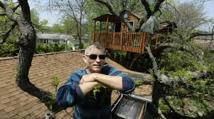 illinois treehouse being rented on airbnb leads to zoning meeting