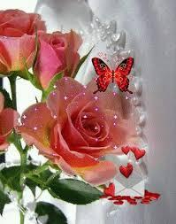 53 best butterflies n roses images on butterflies