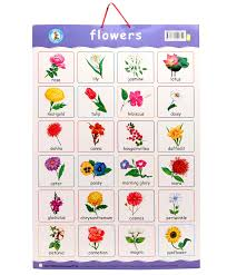 names of flowers in english magiel info flower ideas