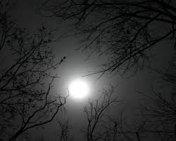 moon phases 2017 lunar calendar