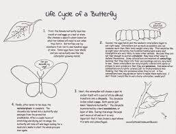 100 life cycle of a frog coloring page phases of the cell cycle