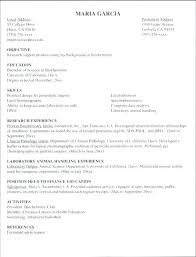 resume template for internship sales internship resume college internship resume template resume