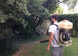 Backyard Mosquito Repellent by Mosquito Repellent Mosquitomax Houston Tx
