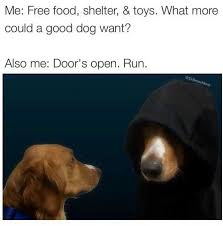 Free Food Meme - dopl3r com memes free food shelter and toys door s open run