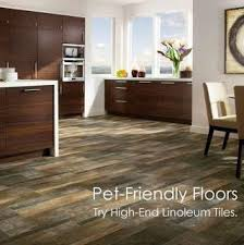 11 best wood floors pet images on flooring
