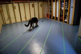 painting a floor stripes for the hovel when the drywall dust settles