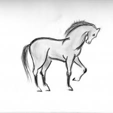 simple animal drawings for beginners drawing animals sketches
